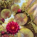 Gugge Norinder, akvarell
